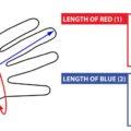 giro-mens-gloves