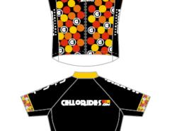 custom design Cellorides project by Licello